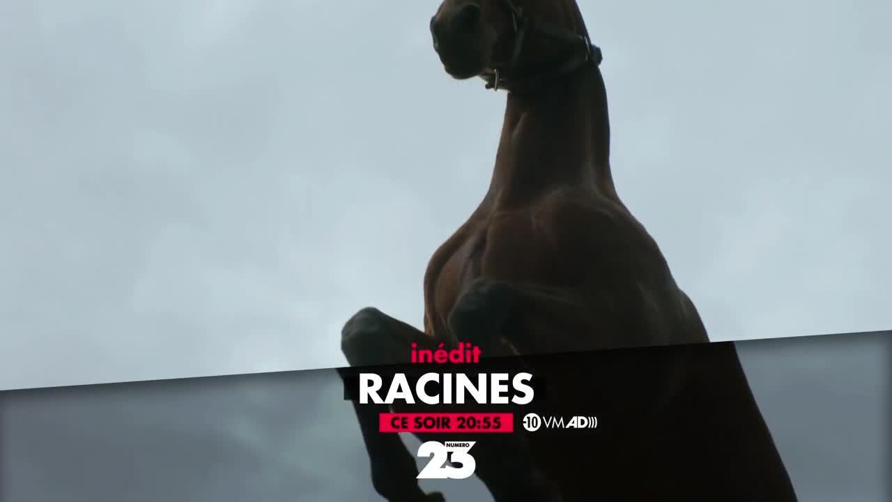 Racines - 11 janvier
