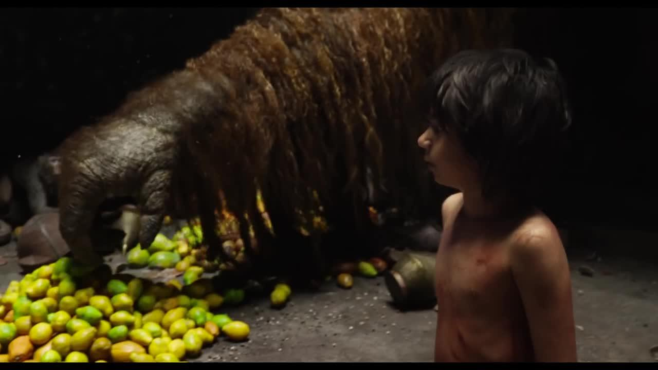 Le Livre de la Jungle - 17 février