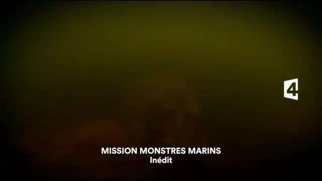 Mission monstres marins - 29 avril