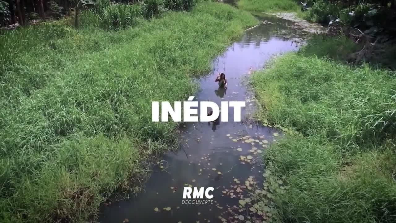Retour à l'instinct primaire - 12 septembre